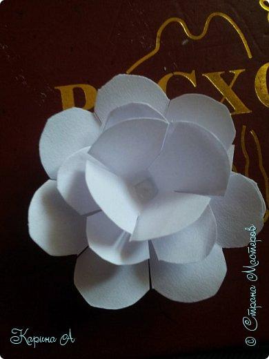 Здравствуйте! Сегодня я хочу показать Вам МК вот таких цветочков. В СМ я не видела такого МК, поэтому если найдете, скажите мне. Для этого нужна Бумага, клей и полубусина. фото 16