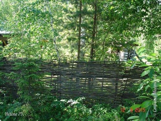 """Есть на Урале место, где человек сливается с природой, чувствуя себя его частью.  Это место необыкновенной красоты, которая проникает в душу каждого, и поселяется там на долго и все последующее время искушает желанием снова вернуться.  Здравствуйте, дорогие жители нашей прекрасной СМ! Приглашаю ВАС в погулять в природный парк """"Оленьи Ручьи"""". фото 18"""