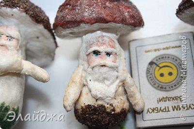 Всем Привет из Днепропетровска! Рада видеть Вас на своей страничке! Ваши советы, критика помогает мне делать мои игрушки более лучшими. Так что Всем заглянувшим  хочу  показать свои лесные грибы которые  слепились на одном дыхании. Наверное потому ,что у нас в этом году грибной сезон  рано начался и продолжается...идут дожди и стоит жара! фото 9
