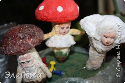 Всем Привет из Днепропетровска! Рада видеть Вас на своей страничке! Ваши советы, критика помогает мне делать мои игрушки более лучшими. Так что Всем заглянувшим  хочу  показать свои лесные грибы которые  слепились на одном дыхании. Наверное потому ,что у нас в этом году грибной сезон  рано начался и продолжается...идут дожди и стоит жара! фото 10