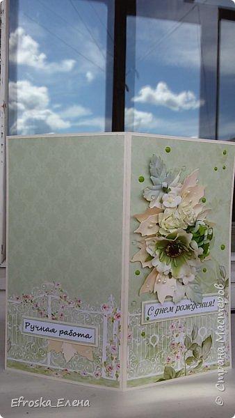 На день рождения подруги сотворилась вот такая открытка.  Бумага от ScrapBerry's коллекция In Bloom Цветочки готовые, листья готовые и лепестки от вырубки Пуансетия.  Ну и конечно дотсы и прозрачные дропсы от Фабрики Декора. фото 2