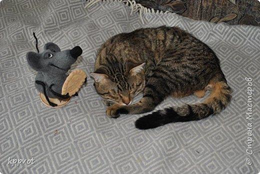 Мышь с печенькой фото 1