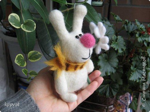 Мышь с печенькой фото 4