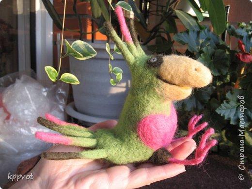 Мышь с печенькой фото 12