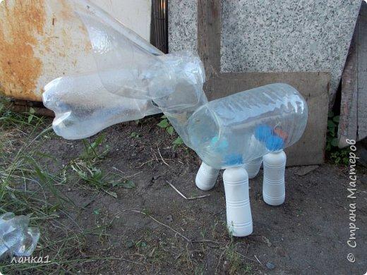 Лето время украшать приусадебные участки. Хочу показать, как я делала очередного питомца в огород. Маленький ослик, чудное животное. фото 3