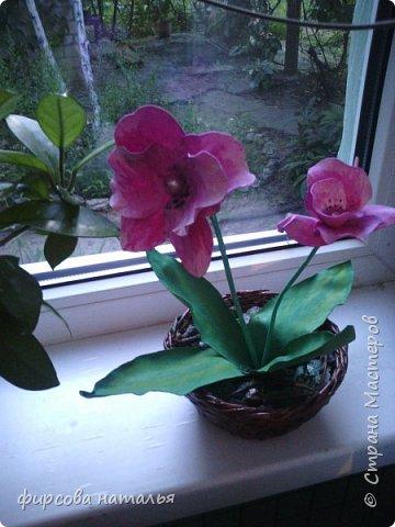 """Давно хотела орхидею,но из-за работы и редко бывая дома сделала из фома.Получила посылочку из """"Стрекозы"""" и сделала пока одну,но много желаний. фото 1"""