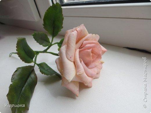 Доброго времени суток, СМ! Продолжаю осваивать хф и в частности розы. Сегодня хочу поделиться с Вами своей садовой розочкой. Вышла она не большая -  около 20 см (точно не измеряла).  фото 1