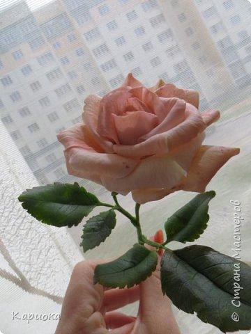 Доброго времени суток, СМ! Продолжаю осваивать хф и в частности розы. Сегодня хочу поделиться с Вами своей садовой розочкой. Вышла она не большая -  около 20 см (точно не измеряла).  фото 10