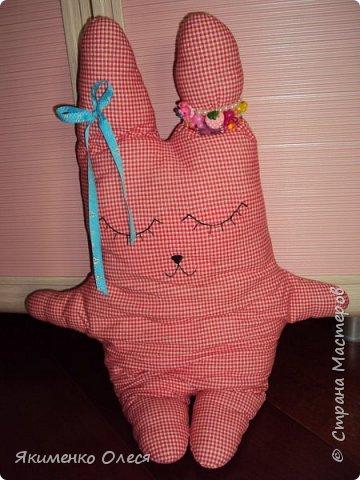 Зайка-баюн для любимой доченьки! Сшит из трикотажа, глазки, носик вышиты. фото 1