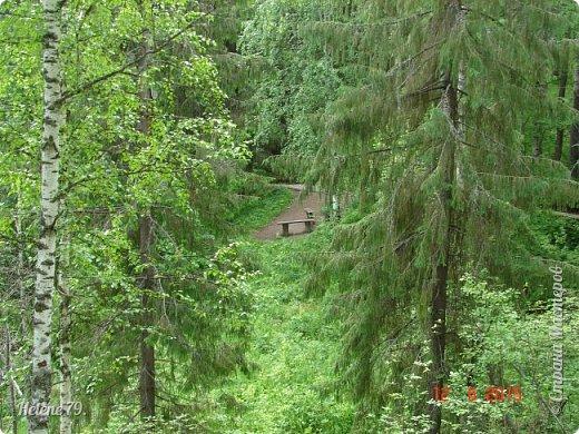 """Здравствуйте, дорогие жители нашей СМ! Приглашаю ВАС продолжить прогулку по природному парку """"Оленьи Ручьи"""".  Начало здесь: http://stranamasterov.ru/node/1038911 фото 3"""