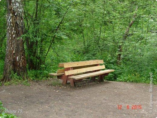 """Здравствуйте, дорогие жители нашей СМ! Приглашаю ВАС продолжить прогулку по природному парку """"Оленьи Ручьи"""".  Начало здесь: http://stranamasterov.ru/node/1038911 фото 17"""