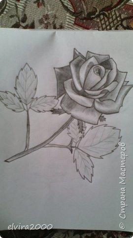 Как вам мои рисунки? фото 1