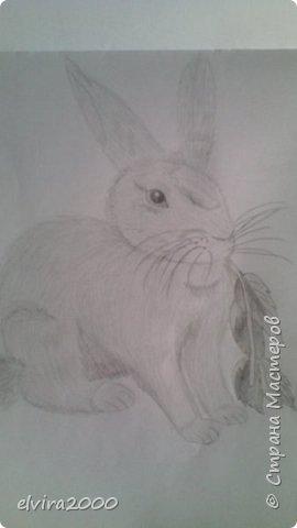 Как вам мои рисунки? фото 10