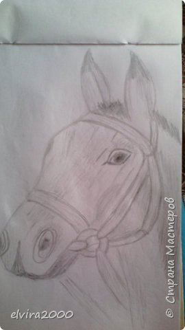 Как вам мои рисунки? фото 12