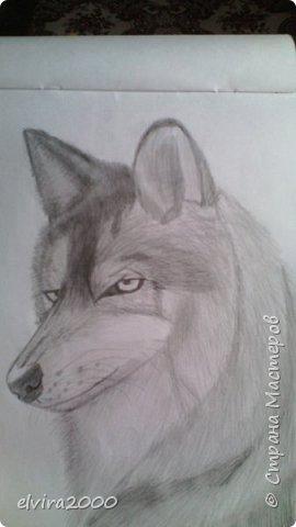 Как вам мои рисунки? фото 3