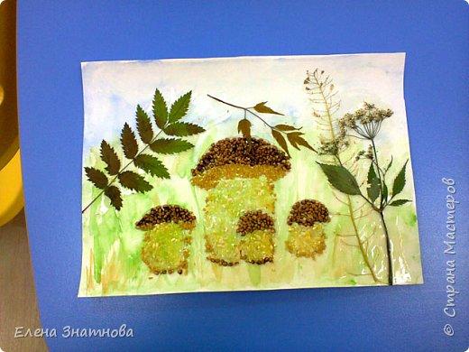 """""""Лесная поляна"""" Рисование фона, мозаика грибов из круп, аппликация гербарием. фото 1"""
