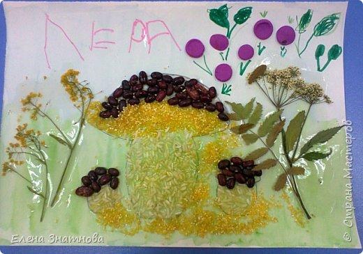 """""""Лесная поляна"""" Рисование фона, мозаика грибов из круп, аппликация гербарием. фото 2"""
