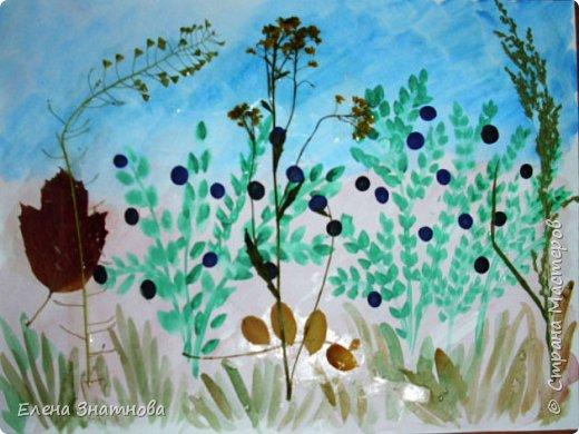 """""""Лесная поляна"""" Рисование фона, мозаика грибов из круп, аппликация гербарием. фото 4"""