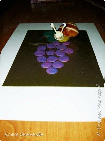 """""""Лесная поляна"""" Рисование фона, мозаика грибов из круп, аппликация гербарием. фото 9"""