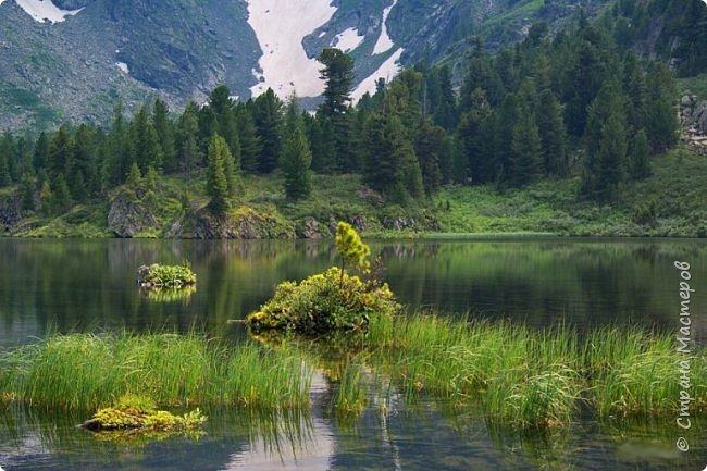 Сегодня я предлагаю посетить одну из главных достопримечательностей не только Чемальского района, но и всего Горного Алтая - Каракольские озера. О чем-то я расскажу сама, часть материала будет из Википедии, а то, что в кавычках - подписи к фотографиям Светланы Семиволовой - основного нашего фотографа. Некоторые из фотографий сделаны её племянником Сергеем Семиволовым. Реальная дорога к озерам трудна, а нам она дастся без труда, только немного времени потребует. Ну что ж, в добрый путь! фото 55