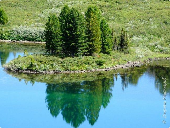 Сегодня я предлагаю посетить одну из главных достопримечательностей не только Чемальского района, но и всего Горного Алтая - Каракольские озера. О чем-то я расскажу сама, часть материала будет из Википедии, а то, что в кавычках - подписи к фотографиям Светланы Семиволовой - основного нашего фотографа. Некоторые из фотографий сделаны её племянником Сергеем Семиволовым. Реальная дорога к озерам трудна, а нам она дастся без труда, только немного времени потребует. Ну что ж, в добрый путь! фото 52