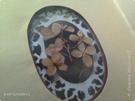 Делала блокноты в подарок. Люблю гербарии.  Решила сделать обложку со сквозным отверстием и вставить туда плотную плёнку с сухоцветами. Гербарий приклеен с помощью прозрачной бесцветной самоклейки. фото 9