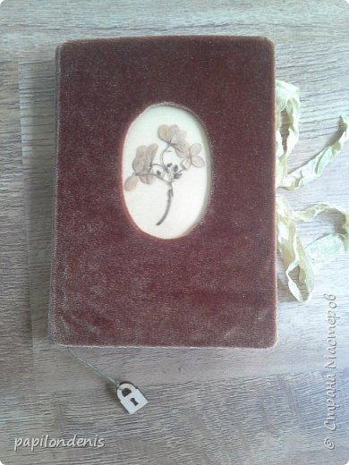 Делала блокноты в подарок. Люблю гербарии.  Решила сделать обложку со сквозным отверстием и вставить туда плотную плёнку с сухоцветами. Гербарий приклеен с помощью прозрачной бесцветной самоклейки. фото 11