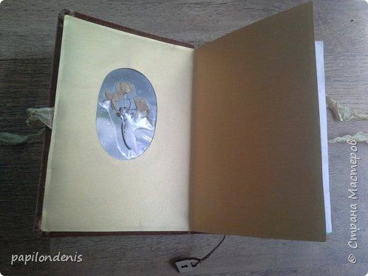 Делала блокноты в подарок. Люблю гербарии.  Решила сделать обложку со сквозным отверстием и вставить туда плотную плёнку с сухоцветами. Гербарий приклеен с помощью прозрачной бесцветной самоклейки. фото 12