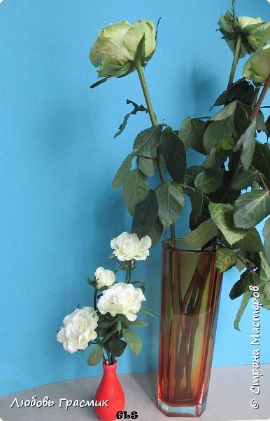 Розочки из зефирного фоамирана фото 21