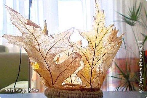 чёрная ваза из скелетированных листьев каштана фото 15