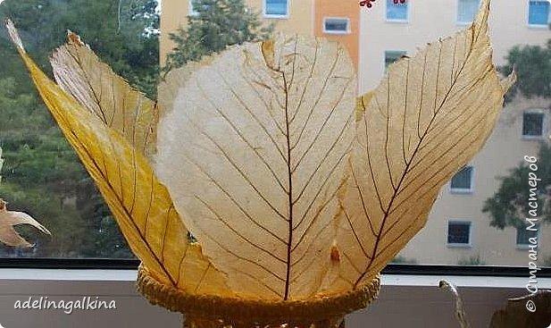 чёрная ваза из скелетированных листьев каштана фото 7
