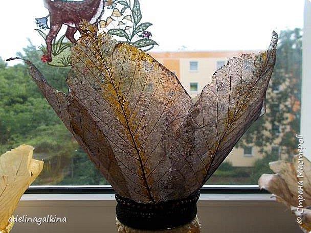 чёрная ваза из скелетированных листьев каштана фото 1