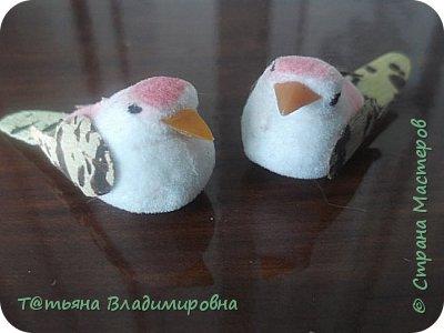 Приветствую всех жителей СМ! Вот приобрела на сайте таких скучных птичек. И сразу взялась за их обновление. фото 1
