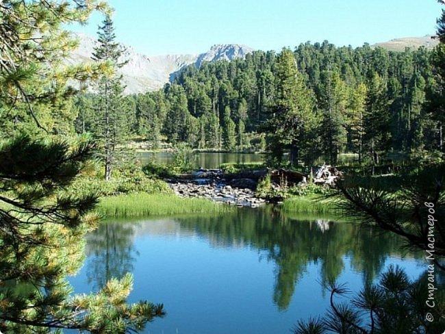 Сегодня я предлагаю посетить одну из главных достопримечательностей не только Чемальского района, но и всего Горного Алтая - Каракольские озера. О чем-то я расскажу сама, часть материала будет из Википедии, а то, что в кавычках - подписи к фотографиям Светланы Семиволовой - основного нашего фотографа. Некоторые из фотографий сделаны её племянником Сергеем Семиволовым. Реальная дорога к озерам трудна, а нам она дастся без труда, только немного времени потребует. Ну что ж, в добрый путь! фото 3