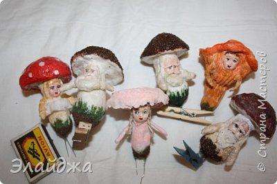 Всем Привет из Днепропетровска! Рада видеть Вас на своей страничке! Ваши советы, критика помогает мне делать мои игрушки более лучшими. Так что Всем заглянувшим  хочу  показать свои лесные грибы которые  слепились на одном дыхании. Наверное потому ,что у нас в этом году грибной сезон  рано начался и продолжается...идут дожди и стоит жара! фото 18