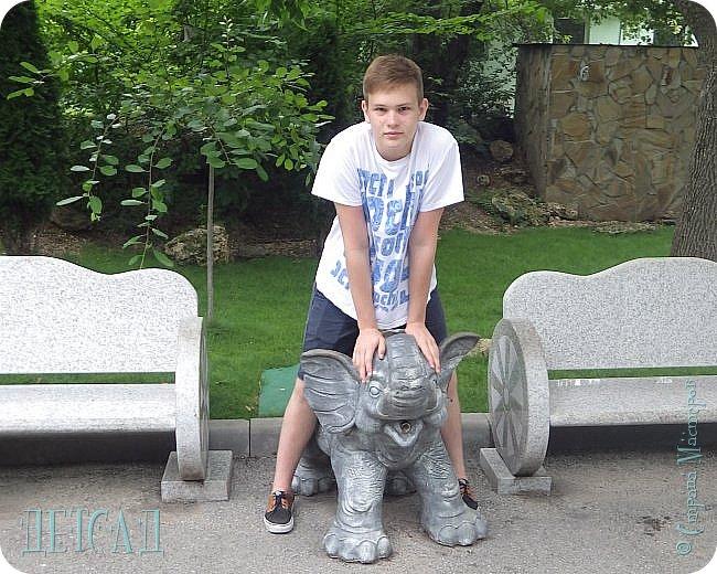 Экскурсия в парк львов ТАЙГАН фото 36