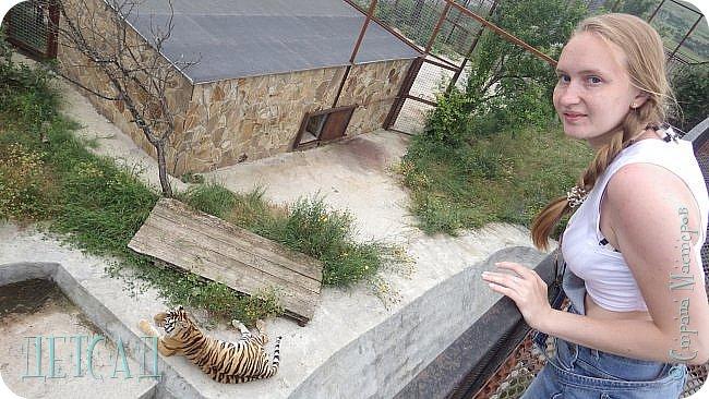 Экскурсия в парк львов ТАЙГАН фото 26