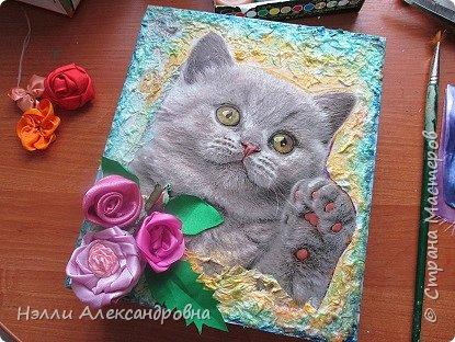 """Попал мне в руки пакет с красивым рисунком. Я рисунок котёнка вырезала и наклеила на  фанерку.  клеем  master klein. Очень долго выгоняла пузырьки из-под  плёнки. Это самое трудное. После высыхания (долго) оставшуюся часть за декорировала  салфетками и мазками  """"изобразила"""" цветочки. Всё фото 2"""