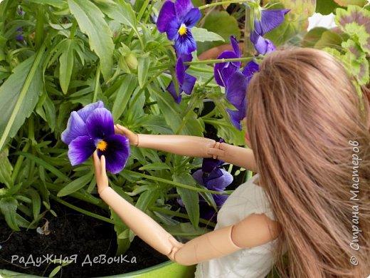 Приветствую всех жителей Страны Мастеров!!! Сегодня мы пофоткались с красивыми летними цветочками) фото 2