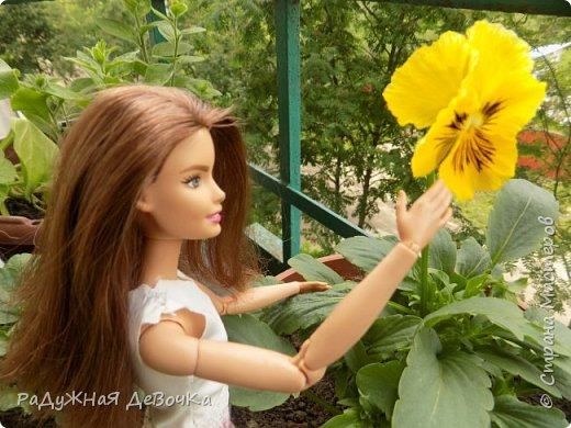 Приветствую всех жителей Страны Мастеров!!! Сегодня мы пофоткались с красивыми летними цветочками) фото 3