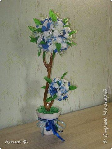 """топиарий """"Весна"""""""