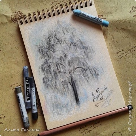 Зарисовки: дерево