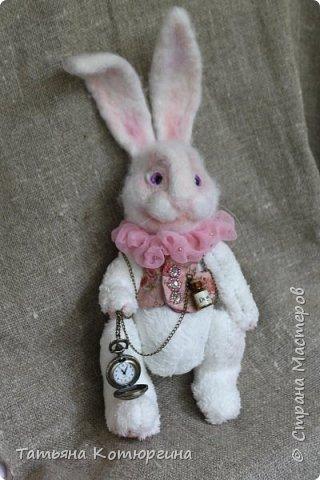 Белый кролик. Розовые сны. фото 6