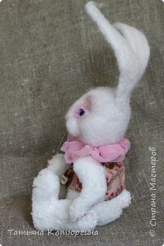 Белый кролик. Розовые сны. фото 2