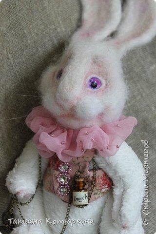 Белый кролик. Розовые сны. фото 3