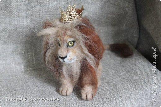 Лев из шерсти. фото 4