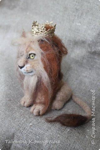 Лев из шерсти. фото 3