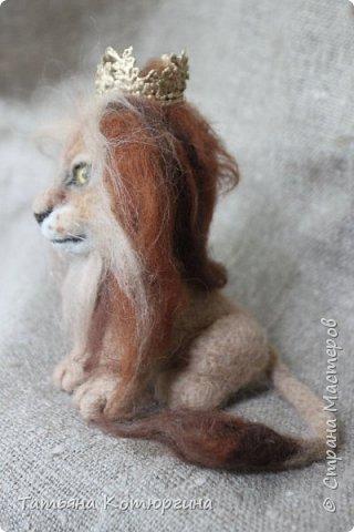 Лев из шерсти. фото 5