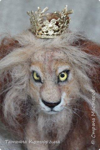 Лев из шерсти. фото 2
