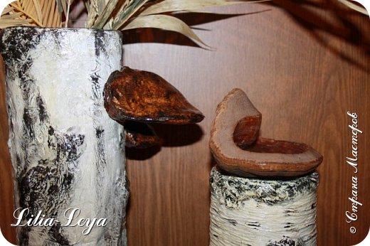 Только благодаря прекрасным красочным фоторепортажам   Ирина 007    http://stranamasterov.ru/user/8254       я решилась выставить эту поделку) фото 3